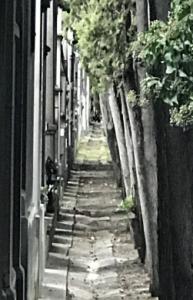 Alley way - Jane Turner